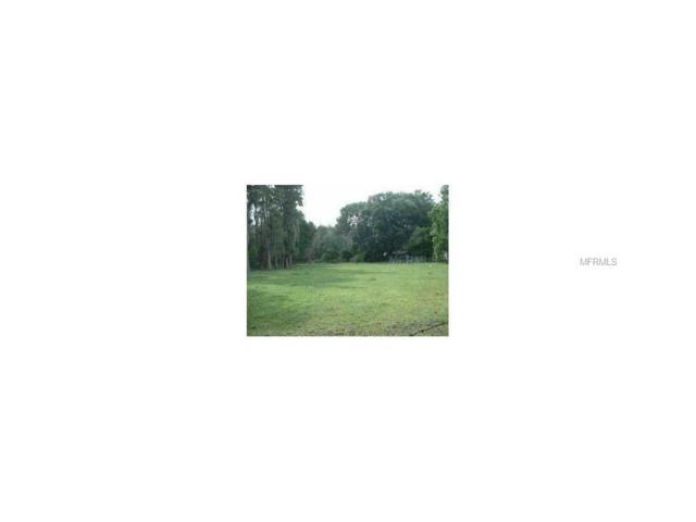 4015 Hudson Lane, Tampa, FL 33624 (MLS #T2889193) :: White Sands Realty Group