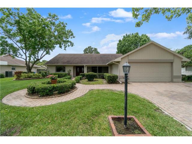 4104 W Bank Avenue, Tampa, FL 33624 (MLS #T2889202) :: The Duncan Duo & Associates