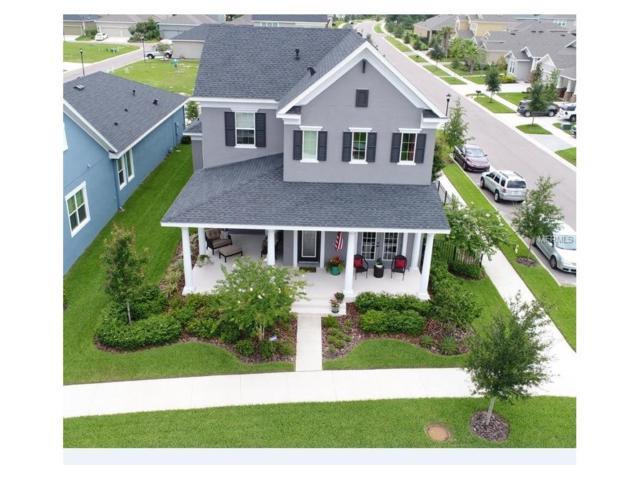 6009 Watercolor Drive, Lithia, FL 33547 (MLS #T2889215) :: The Duncan Duo & Associates