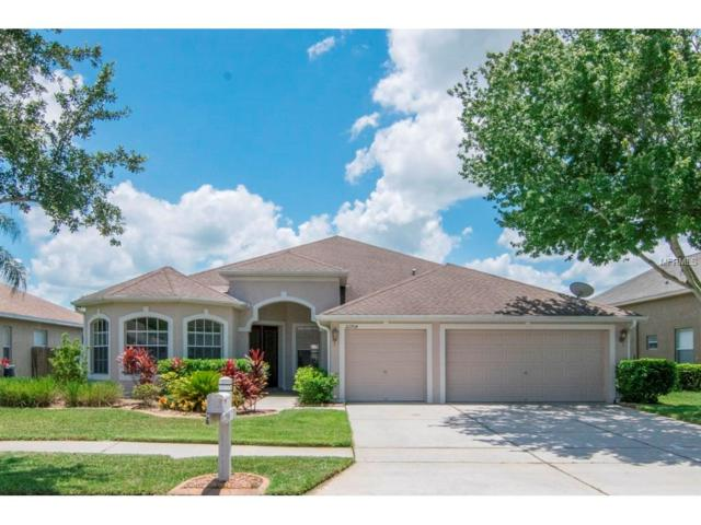 22704 Eagles Watch Drive, Land O Lakes, FL 34639 (MLS #T2889223) :: Griffin Group