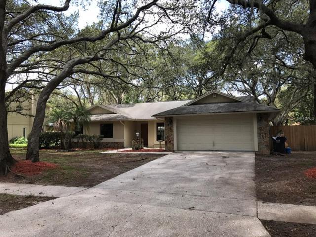3905 Rosedale Drive, Brandon, FL 33511 (MLS #T2889269) :: Arruda Family Real Estate Team