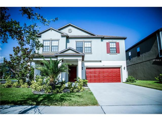 11802 Twilight Darner Place, Riverview, FL 33569 (MLS #T2889278) :: The Duncan Duo & Associates
