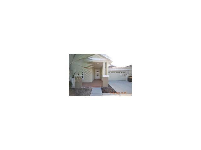 20137 Heritage Point Drive, Tampa, FL 33647 (MLS #T2889286) :: Team Bohannon Keller Williams, Tampa Properties