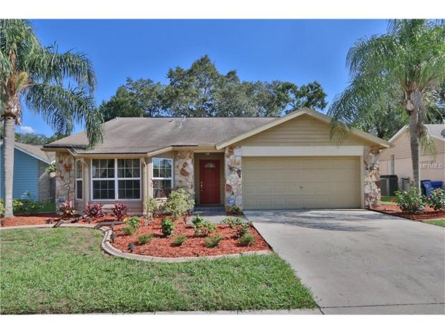 5803 Taywood Drive, Tampa, FL 33624 (MLS #T2889292) :: Griffin Group