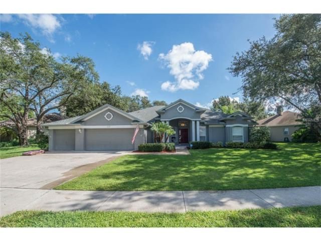 2314 Timbergrove Drive, Valrico, FL 33596 (MLS #T2889293) :: Arruda Family Real Estate Team