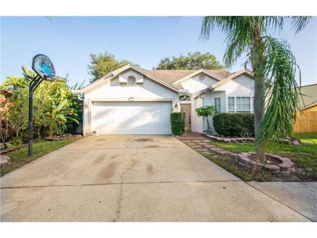 9711 Long Meadow Drive, Tampa, FL 33615 (MLS #T2889294) :: RE/MAX Realtec Group