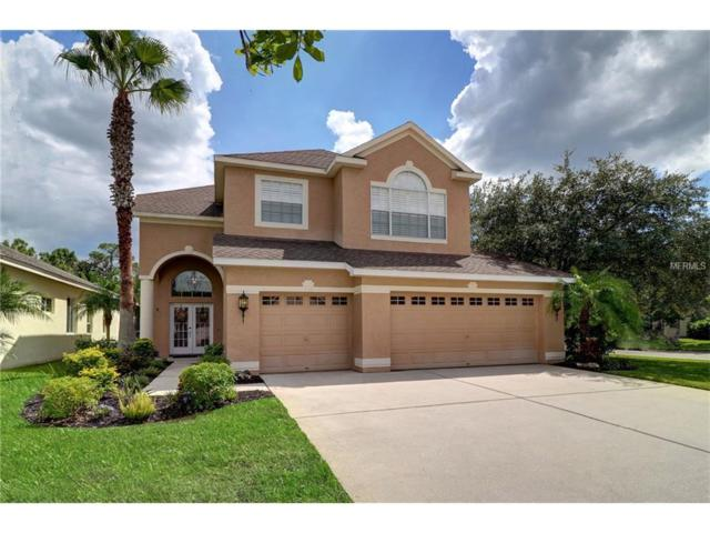 9601 Greenpointe Drive, Tampa, FL 33626 (MLS #T2889297) :: The Duncan Duo & Associates