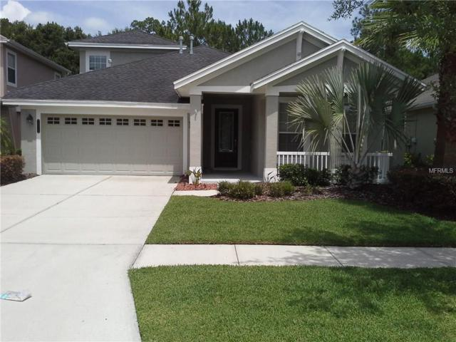 20018 Heritage Point Drive, Tampa, FL 33647 (MLS #T2889301) :: Team Bohannon Keller Williams, Tampa Properties