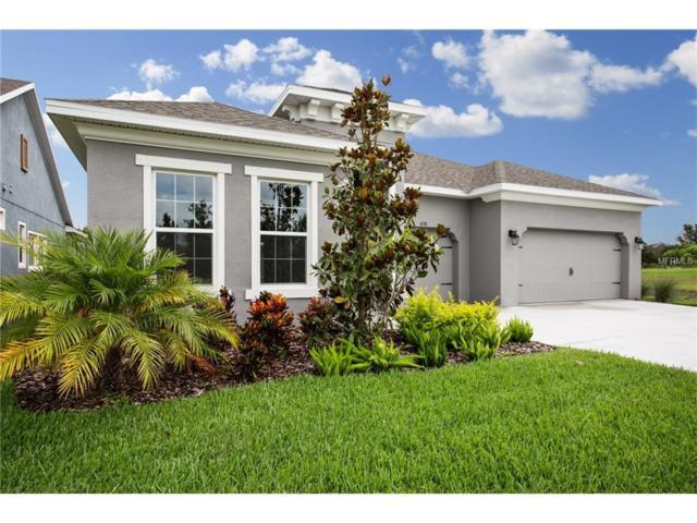 6538 Mayport Drive, Apollo Beach, FL 33572 (MLS #T2889303) :: Arruda Family Real Estate Team