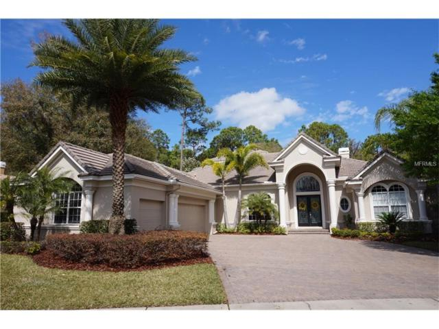 10722 Beagle Run Place, Tampa, FL 33626 (MLS #T2889381) :: Griffin Group