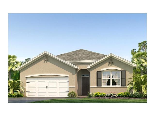 10632 Park Meadowbrooke Drive, Riverview, FL 33578 (MLS #T2889382) :: The Duncan Duo & Associates
