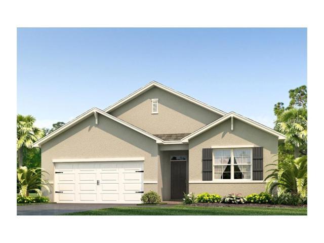 10636 Park Meadowbrooke Drive, Riverview, FL 33578 (MLS #T2889385) :: The Duncan Duo & Associates