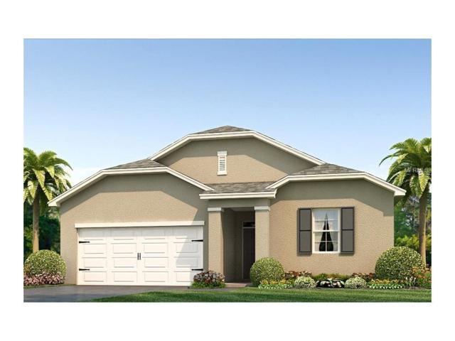 10633 Park Meadowbrooke Drive, Riverview, FL 33578 (MLS #T2889393) :: The Duncan Duo & Associates