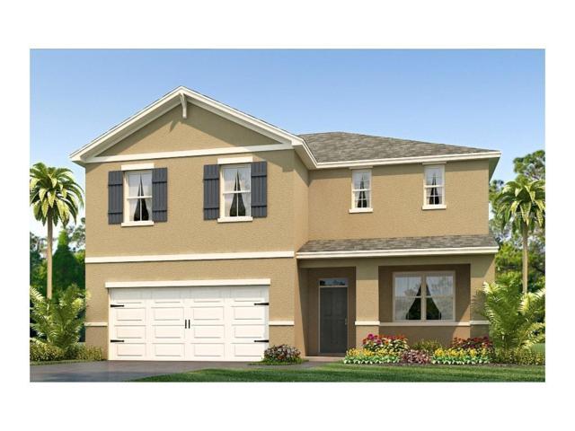10638 Park Meadowbrooke Drive, Riverview, FL 33578 (MLS #T2889397) :: The Duncan Duo & Associates