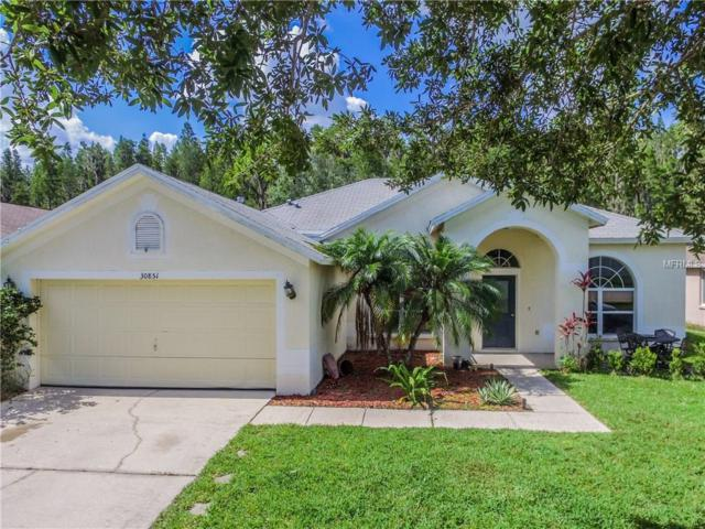 30851 Iverson Drive, Wesley Chapel, FL 33543 (MLS #T2889414) :: Griffin Group