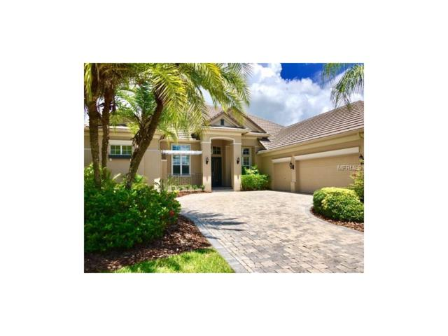 14712 Waterchase Boulevard, Tampa, FL 33626 (MLS #T2889469) :: The Duncan Duo & Associates
