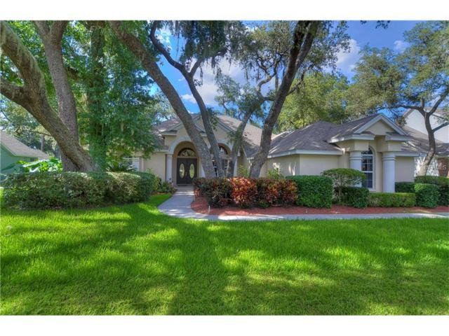 5103 Sylvan Oaks Drive, Valrico, FL 33596 (MLS #T2889473) :: Arruda Family Real Estate Team