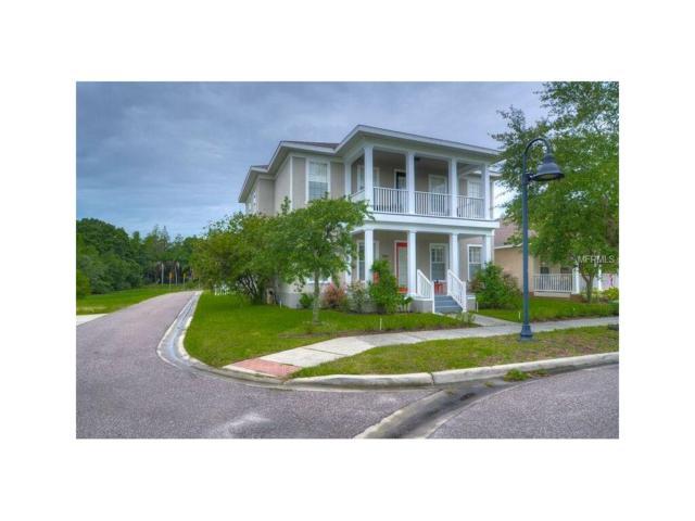 3601 Buffett Street, New Port Richey, FL 34655 (MLS #T2889486) :: Griffin Group