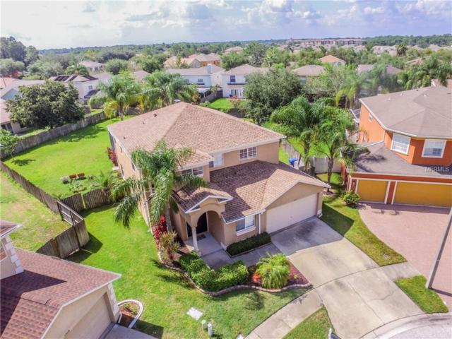 1313 Key West Court, Wesley Chapel, FL 33544 (MLS #T2889511) :: Griffin Group