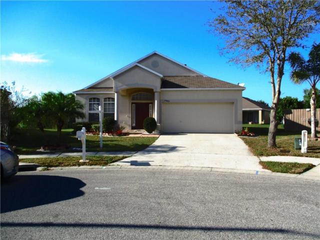 24827 Oakhaven Court, Lutz, FL 33559 (MLS #T2889513) :: Griffin Group