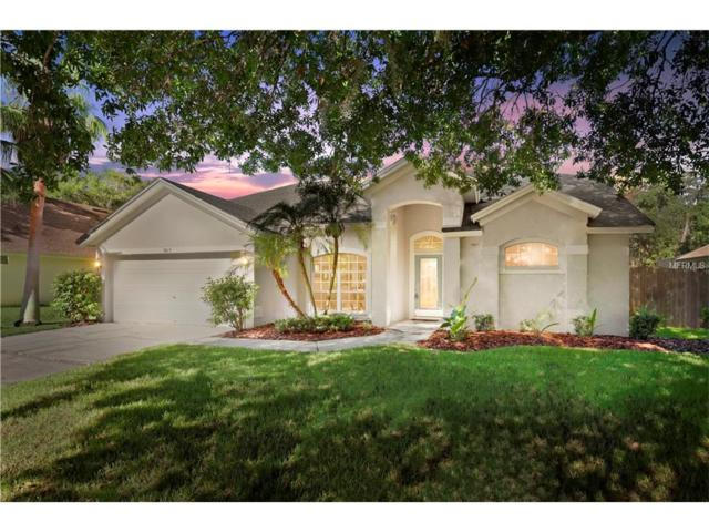 5817 Silas Creek Lane, Wesley Chapel, FL 33545 (MLS #T2889520) :: Griffin Group