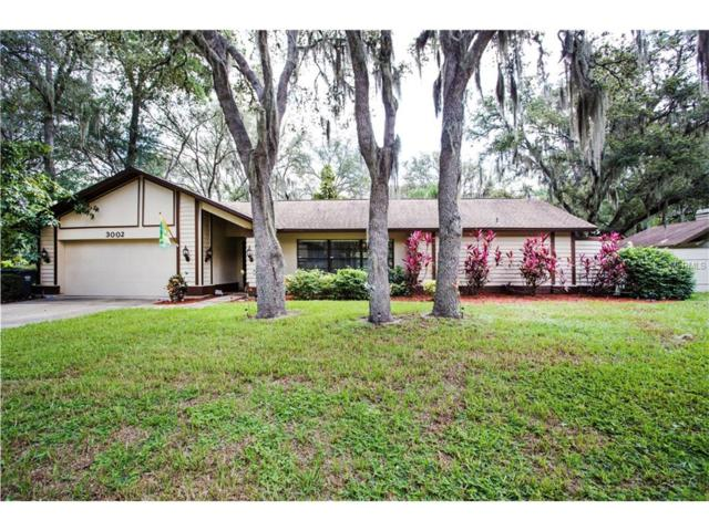 3002 Wister Circle, Valrico, FL 33596 (MLS #T2889523) :: Arruda Family Real Estate Team
