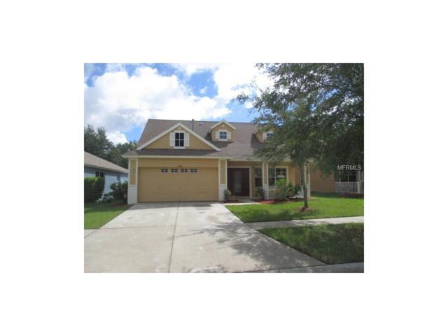 11008 Newbridge Drive, Riverview, FL 33579 (MLS #T2889529) :: The Duncan Duo & Associates