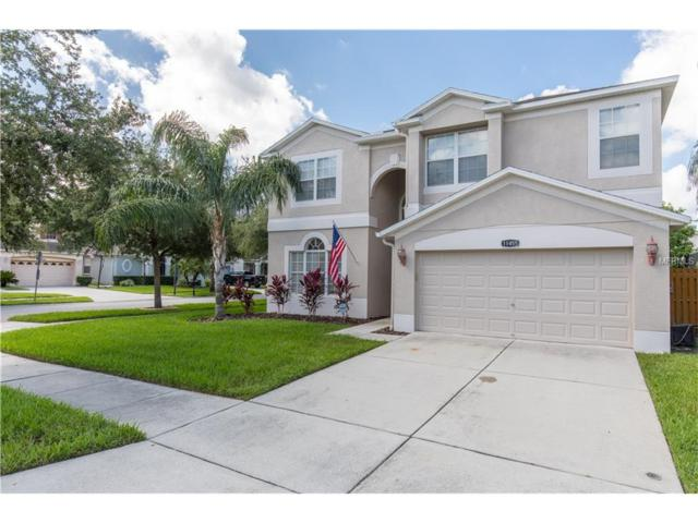 11455 Dutch Iris Drive, Riverview, FL 33578 (MLS #T2889568) :: The Duncan Duo & Associates
