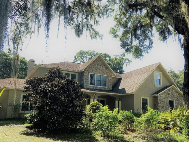 2819 Ranch Road, Valrico, FL 33596 (MLS #T2889571) :: Arruda Family Real Estate Team