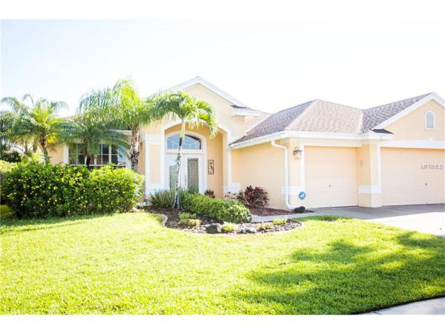 10636 Gretna Green Drive, Tampa, FL 33626 (MLS #T2889587) :: The Duncan Duo & Associates