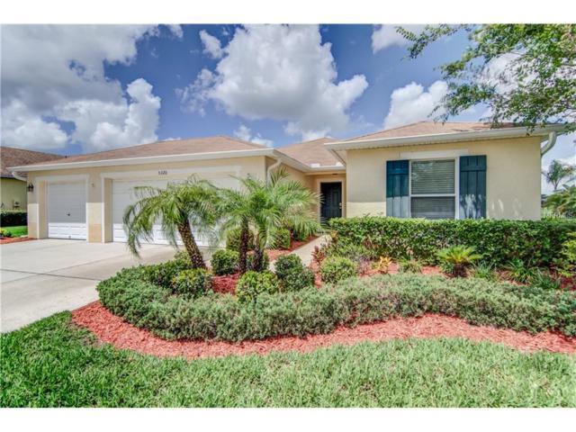 5320 Sandy Shell Drive, Apollo Beach, FL 33572 (MLS #T2889591) :: Arruda Family Real Estate Team