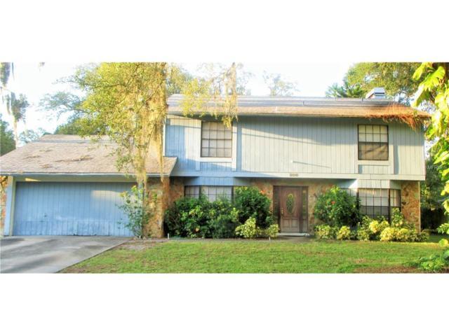 206 Bayfield Drive, Brandon, FL 33511 (MLS #T2889599) :: Griffin Group