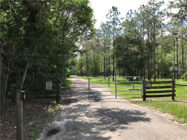 Hanna Road, Lutz, FL 33549 (MLS #T2889632) :: Griffin Group
