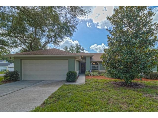 2354 Tioga Drive, Land O Lakes, FL 34639 (MLS #T2889638) :: Griffin Group