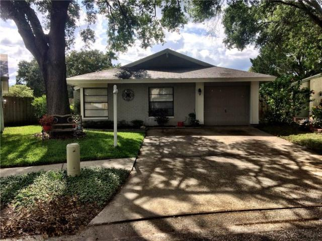 10305 Del Mar Circle, Tampa, FL 33624 (MLS #T2889664) :: Griffin Group