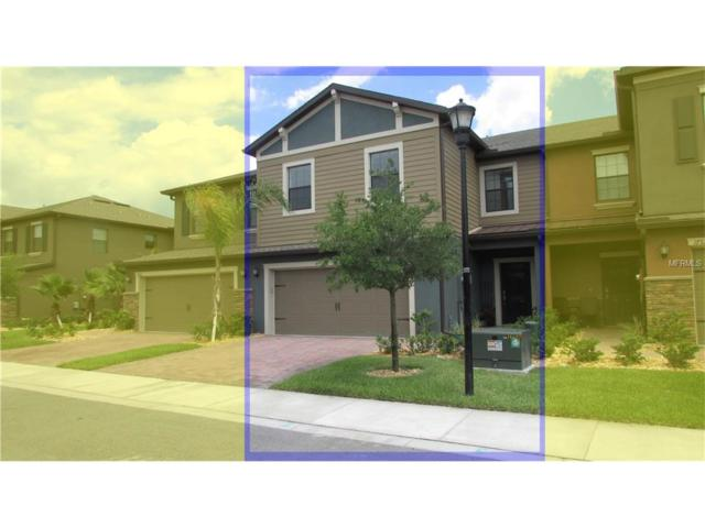 17323 Old Tobacco Road, Lutz, FL 33558 (MLS #T2889680) :: Arruda Family Real Estate Team