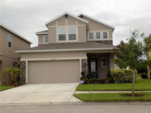 32710 Windelstraw Drive, Wesley Chapel, FL 33545 (MLS #T2889704) :: Arruda Family Real Estate Team