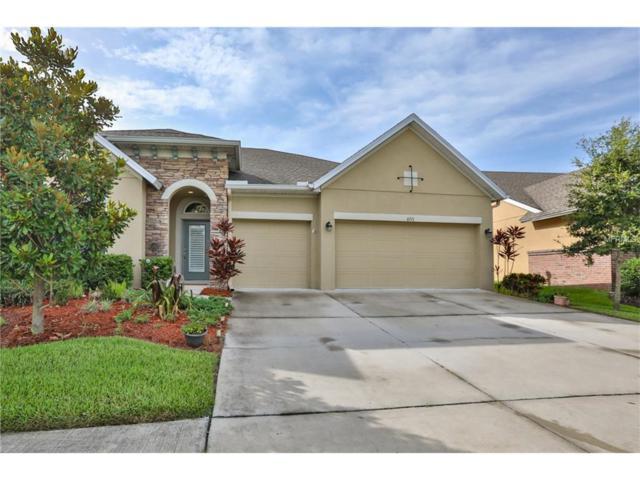 6711 Park Strand Drive, Apollo Beach, FL 33572 (MLS #T2889711) :: Baird Realty Group