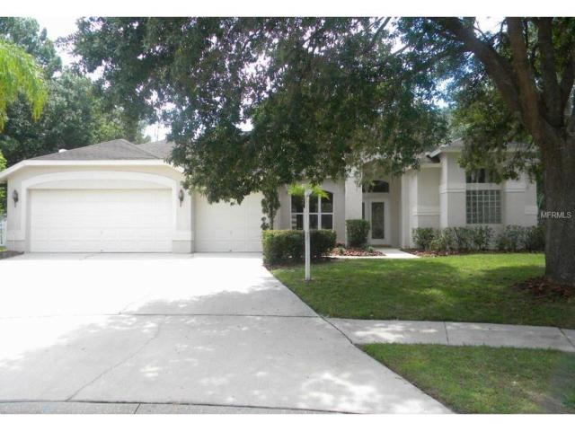 4013 Canter Court, Valrico, FL 33596 (MLS #T2889824) :: Arruda Family Real Estate Team