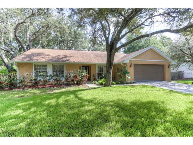 114 Bessemer Circle, Brandon, FL 33511 (MLS #T2889833) :: The Duncan Duo & Associates