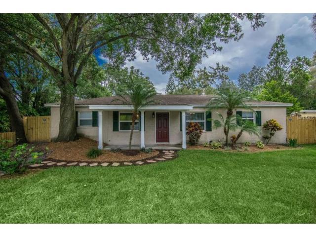 4205 W Bay View Avenue, Tampa, FL 33611 (MLS #T2889848) :: The Duncan Duo & Associates