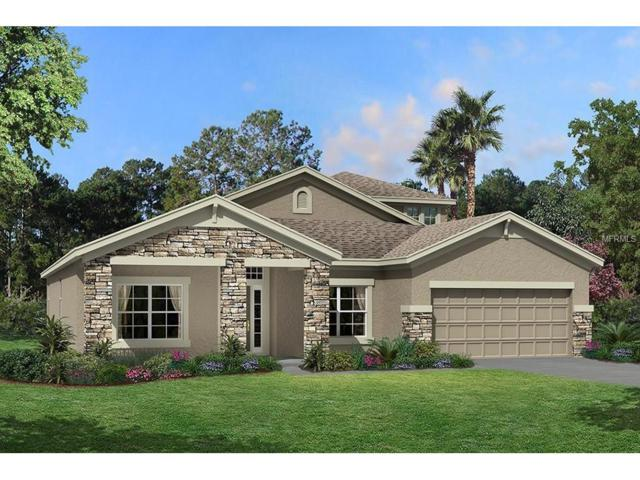 8947 Garden Party Drive, Land O Lakes, FL 34637 (MLS #T2889854) :: Arruda Family Real Estate Team