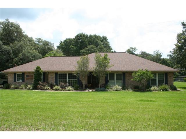 330 Chastain Road, Seffner, FL 33584 (MLS #T2889881) :: Arruda Family Real Estate Team
