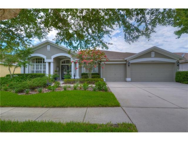 6307 Bridgevista Drive, Lithia, FL 33547 (MLS #T2889933) :: The Duncan Duo & Associates