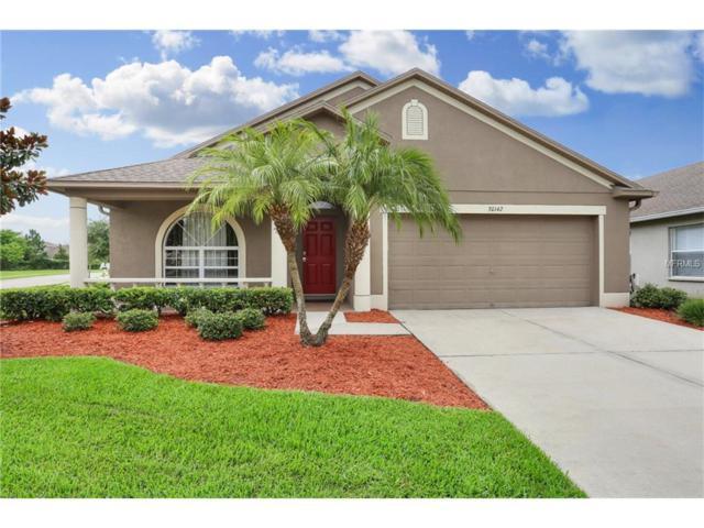 30142 Sotogrande Loop, Wesley Chapel, FL 33543 (MLS #T2889959) :: Arruda Family Real Estate Team