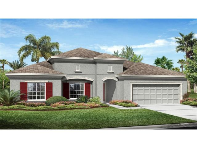1103 116TH Street E, Bradenton, FL 34212 (MLS #T2890000) :: Baird Realty Group