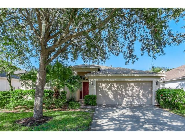9919 Stockbridge Drive, Tampa, FL 33626 (MLS #T2890081) :: The Duncan Duo & Associates