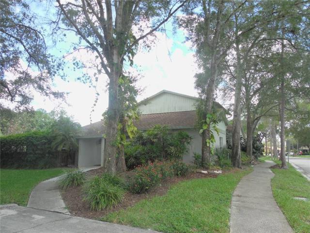 15605 Morning Drive, Lutz, FL 33559 (MLS #T2890092) :: The Duncan Duo & Associates
