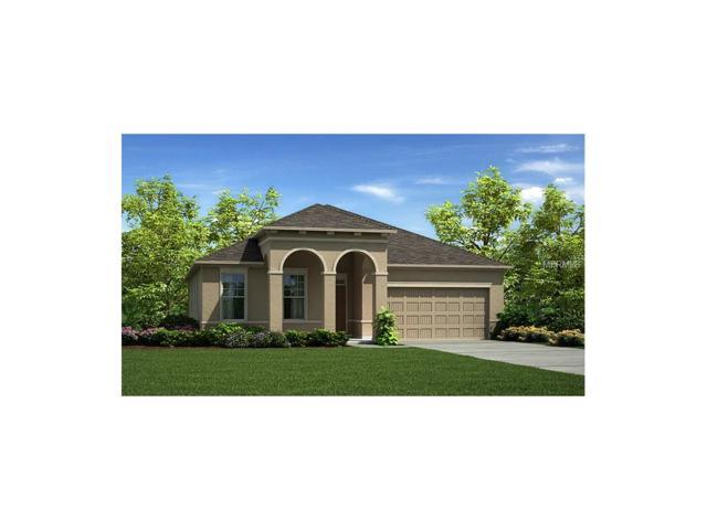 4935 Autumn Ridge #2319 Drive, Wesley Chapel, FL 33545 (MLS #T2890116) :: Arruda Family Real Estate Team