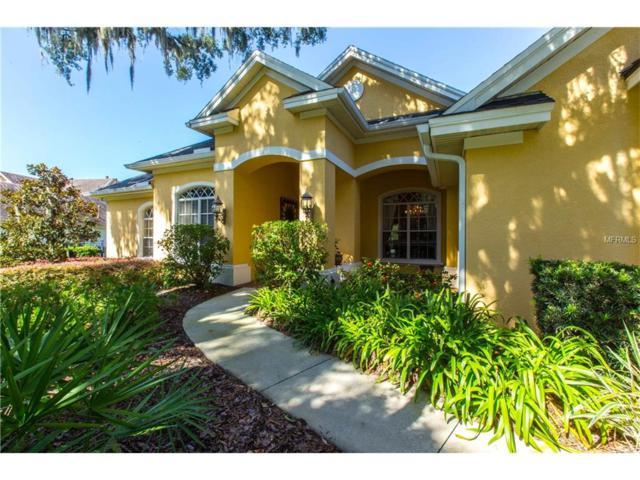 15817 Sorawater Drive, Lithia, FL 33547 (MLS #T2890118) :: The Duncan Duo & Associates